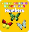 First Padded Board Book - Numbers