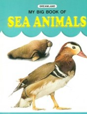 My Big Book of Sea Animals